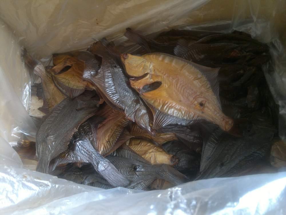 Купить Разная обработанная рыба