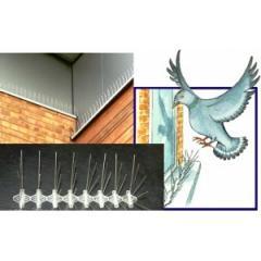 Защита от птиц ANTIBIRD