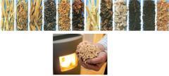 Переработка древесины в древесные брикеты