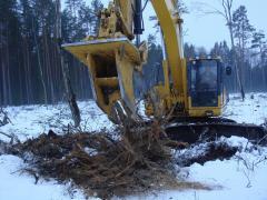 Выкорчевывание деревьев, пней