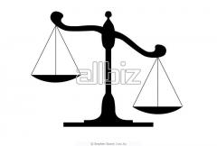 Представление интересов в суде и государственных учреждениях